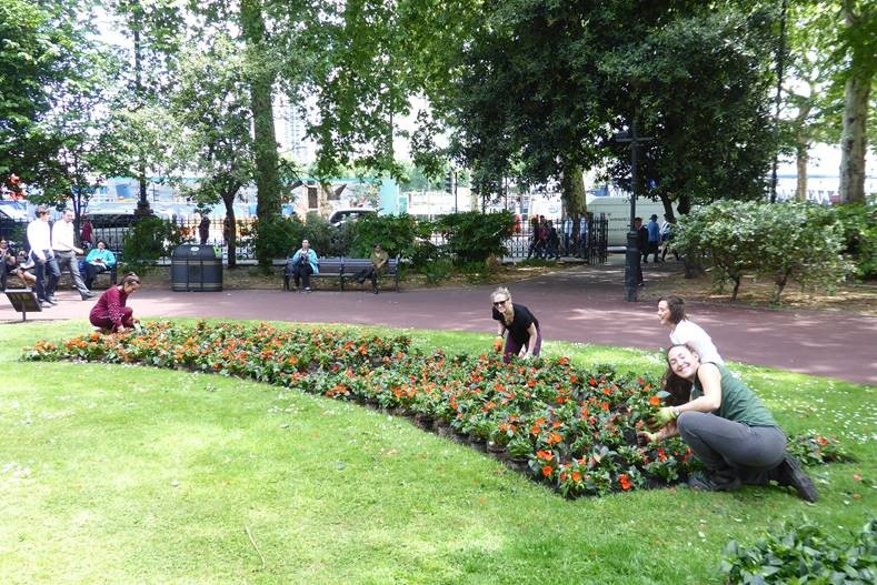 Volunteers Planting Flowers In Whitehall Gardens